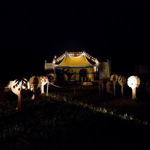 Festival Excentrique 2013